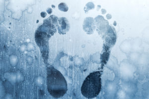 Facebook Libra Cold Feet Cryptocurrrency