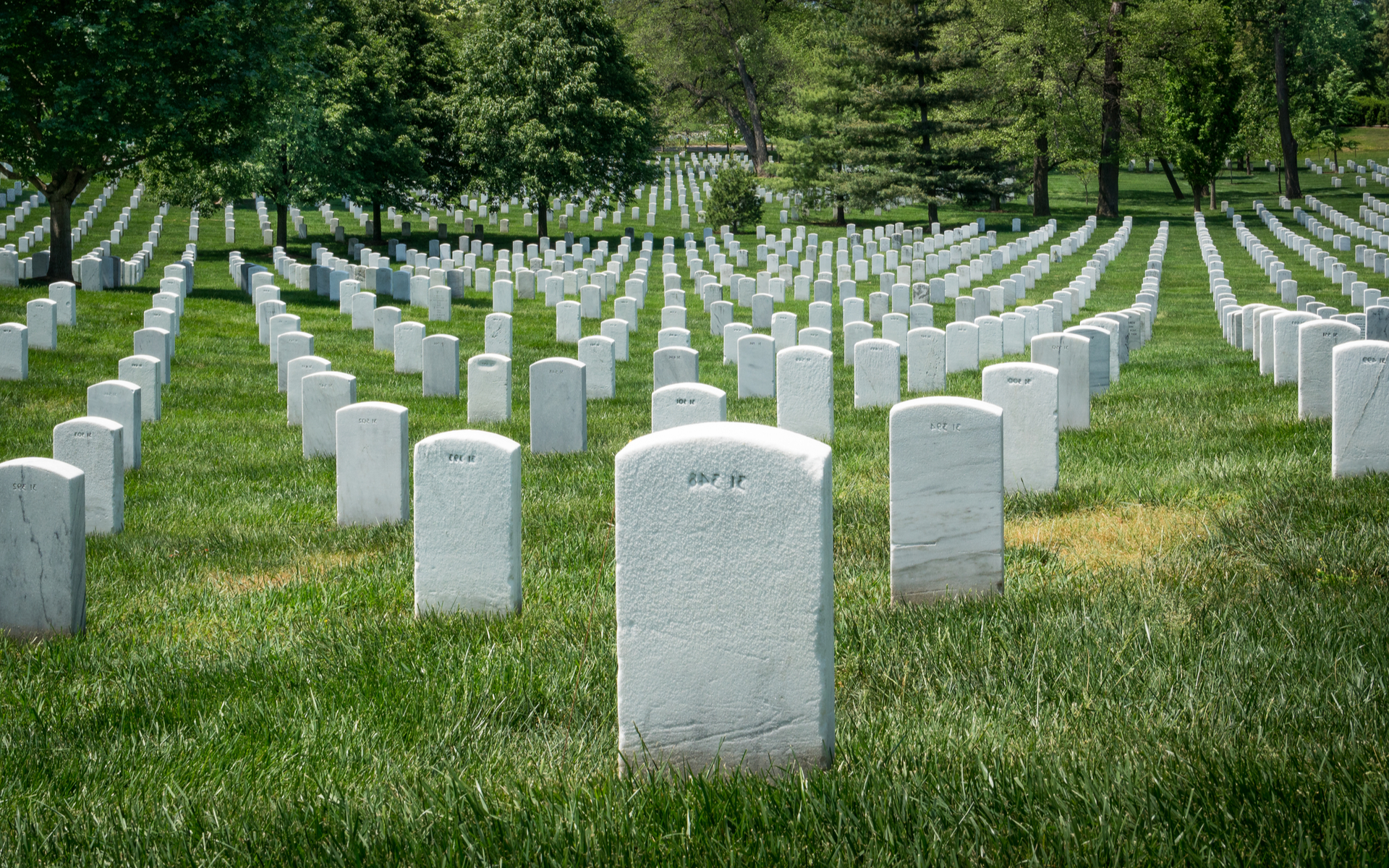 ICO Crypto Projects Are Dead