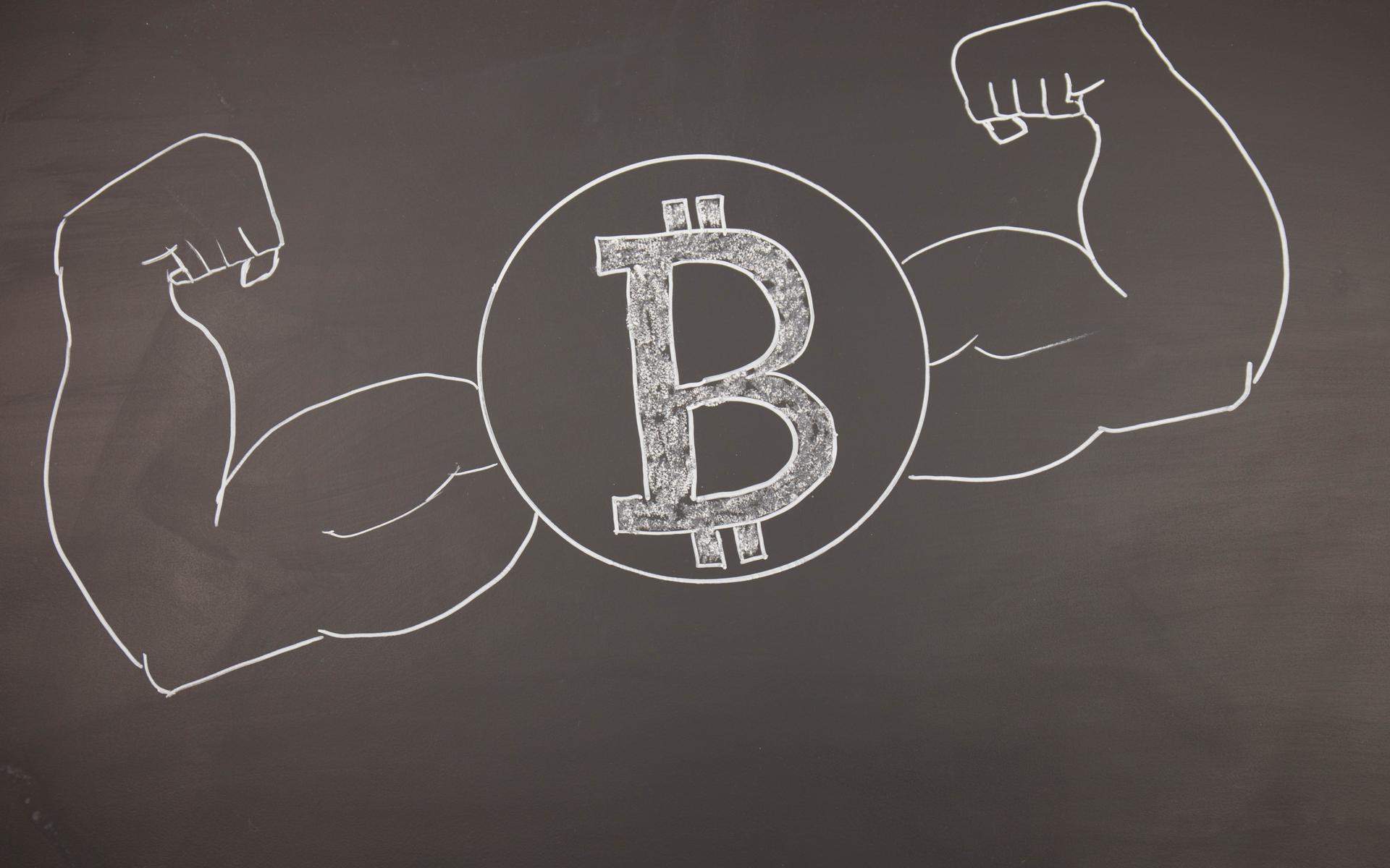 bitcoin fundamentals strong