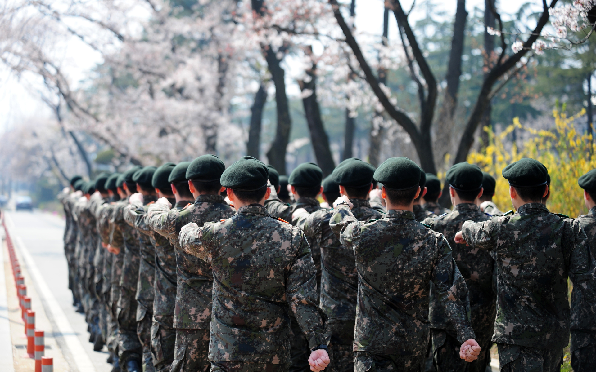 South Korean Military Gets a Blockchain-Based Upgrade
