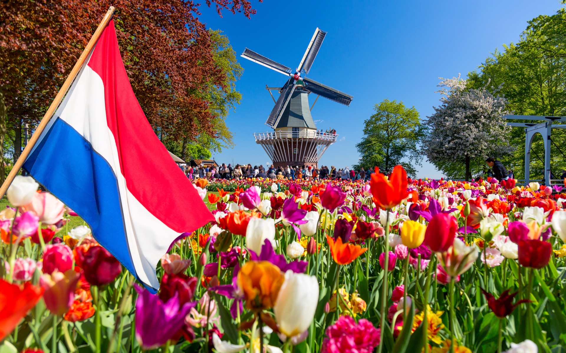 Netherlands Shares Bitcoin Mixer Probe Report With J5 Nations