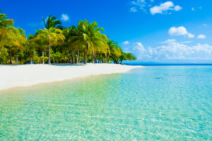 BTSE Crypto Exchange Moves HQ to Offshore Tax Paradise