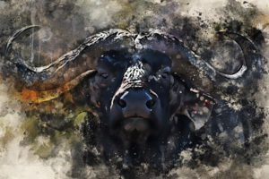 These Bitcoin Bull Signals Paint a Promising Picture For Q2