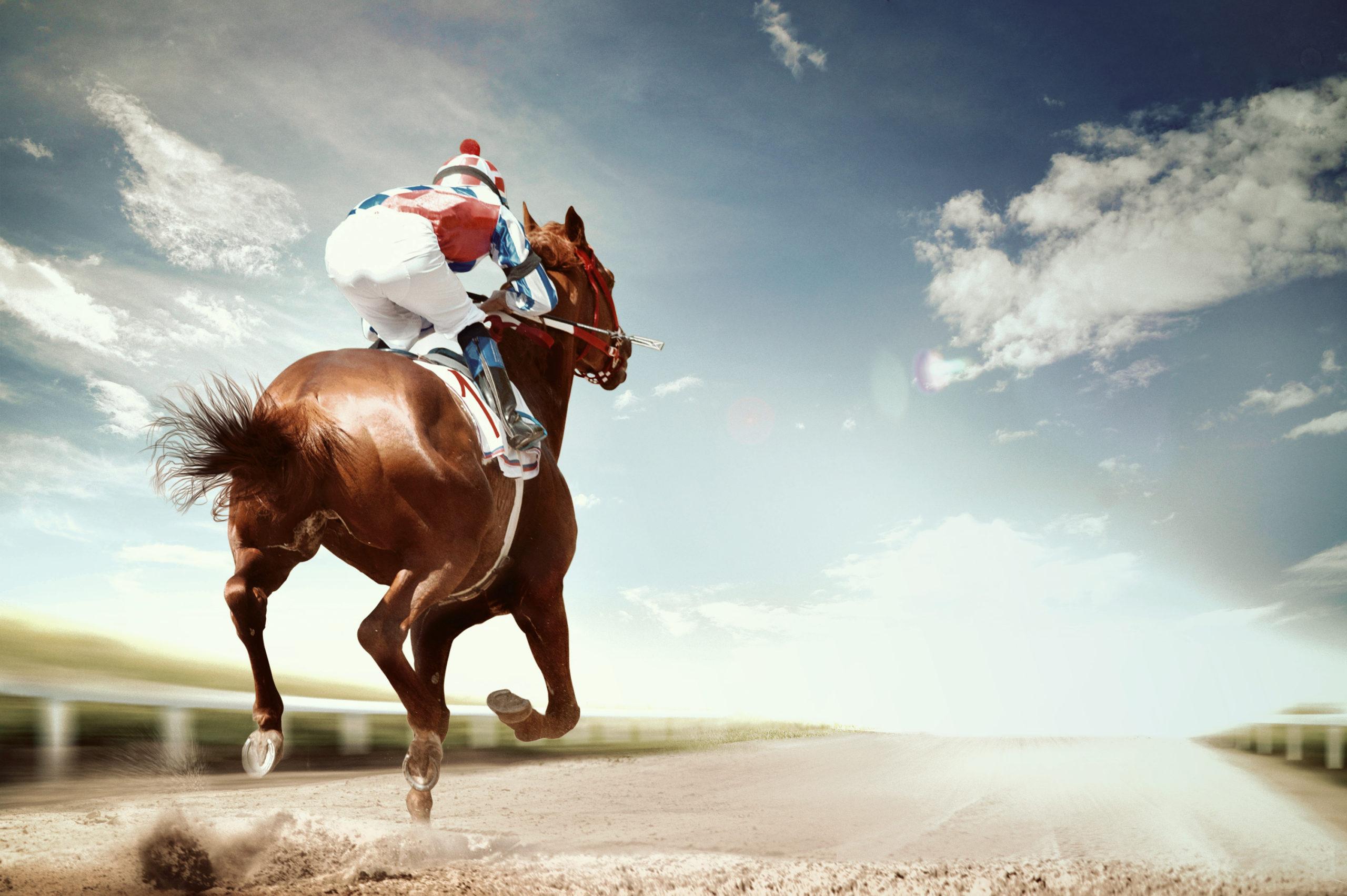 bitcoin fastest horse