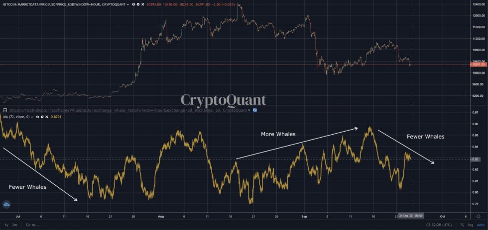 bitcoin, btcusd, btcusdt, xbtusd, cryptocurrency, Euro, EURUSD, cryptocurrency, bitcoin whales