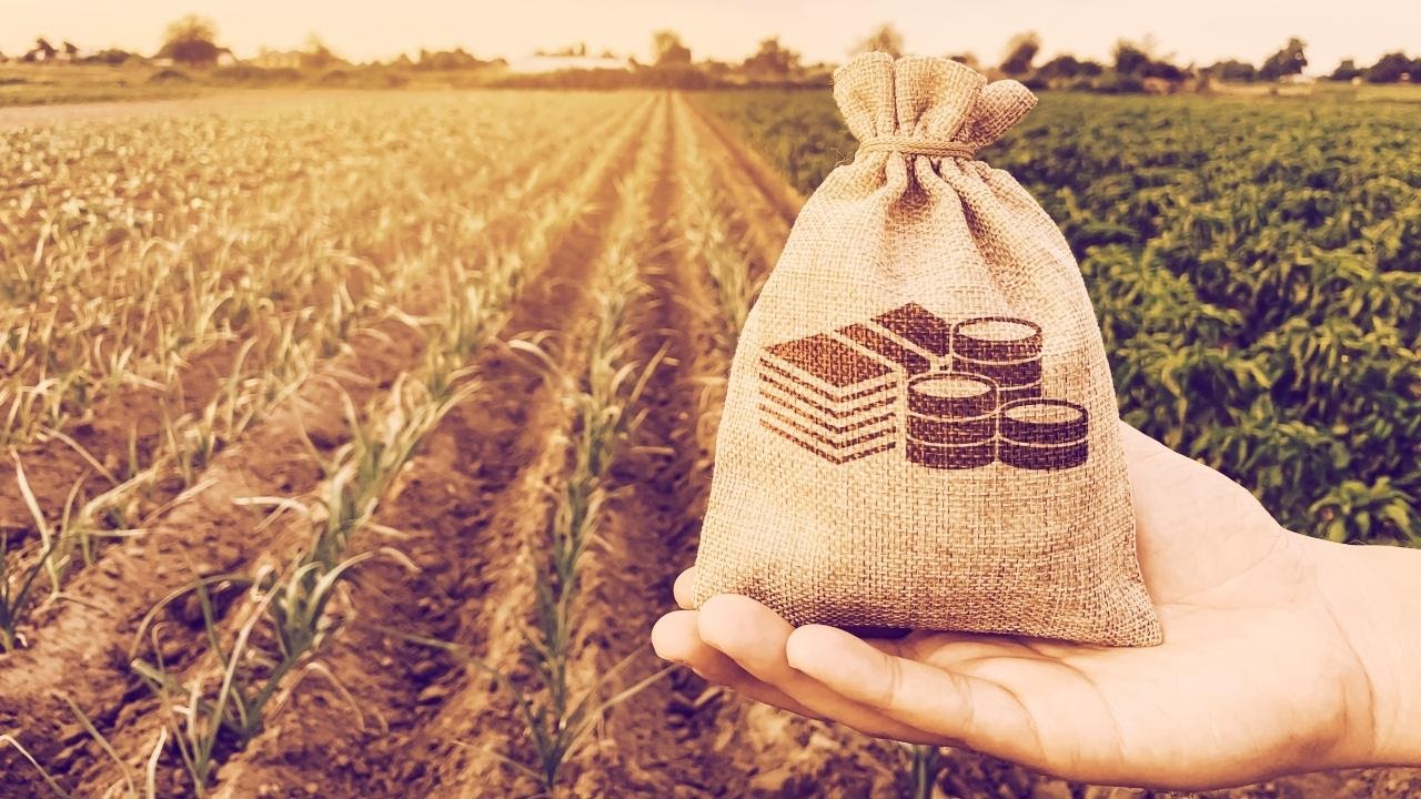 Yield Farming in Decentralized Finance (DeFi)