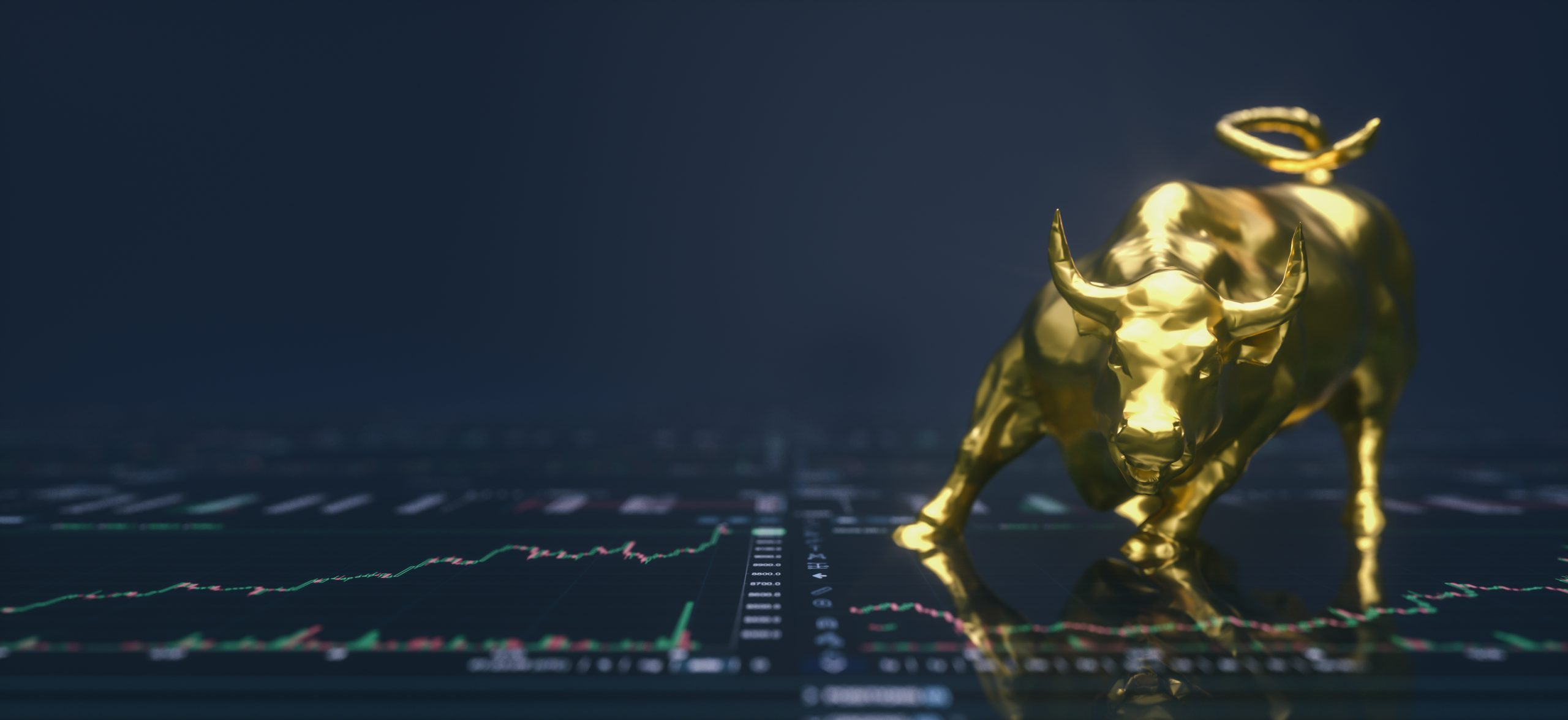 bitcoin bull market correction