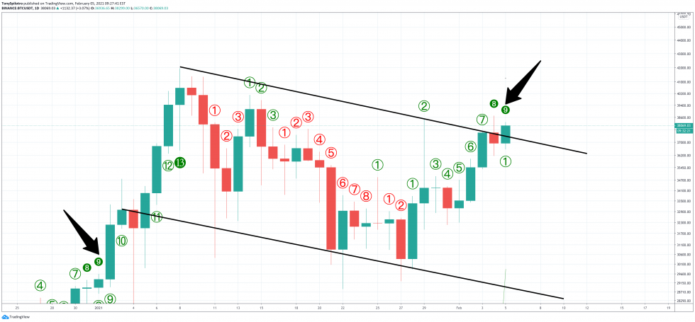 Bear Trap: TD 9 Sell Triggers As Bulls Push Bitcoin Higher