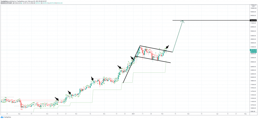 bitcoin bear trap td 9