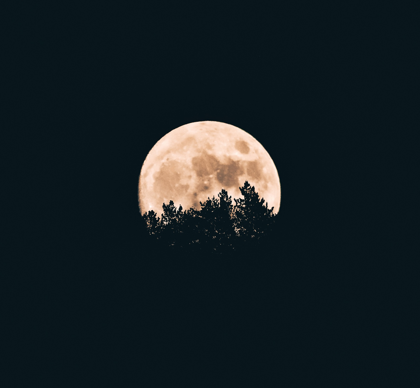 A beautiful moon, for SafeMoon