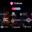Torum Raises $1.45M to Create The First Social Media Platform with NFT & DeFi Innovations
