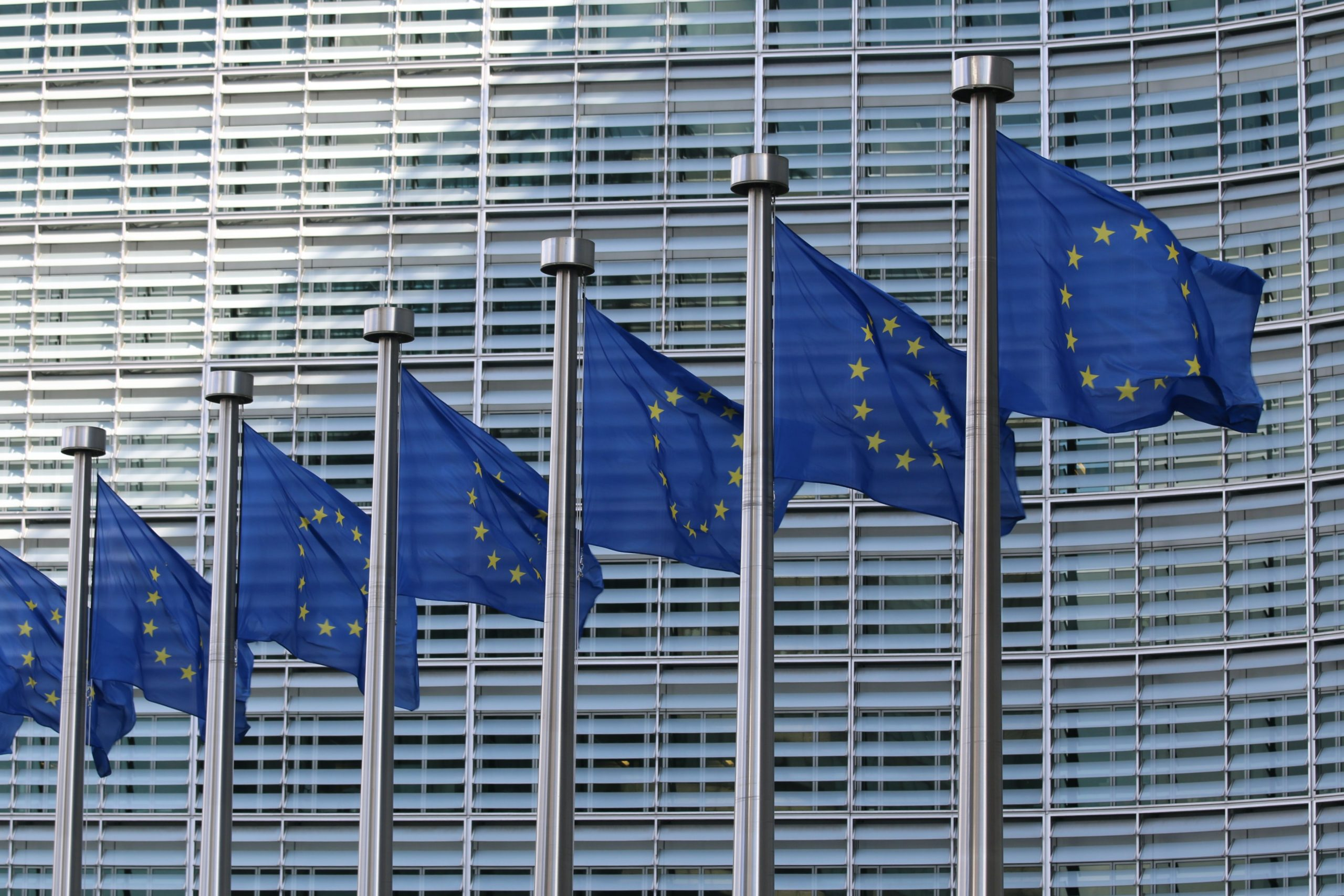 European Central Bank Publishes Risk Report on Bitcoin, Compares the Crypto to the Tulip Mania | Bitcoinist.com