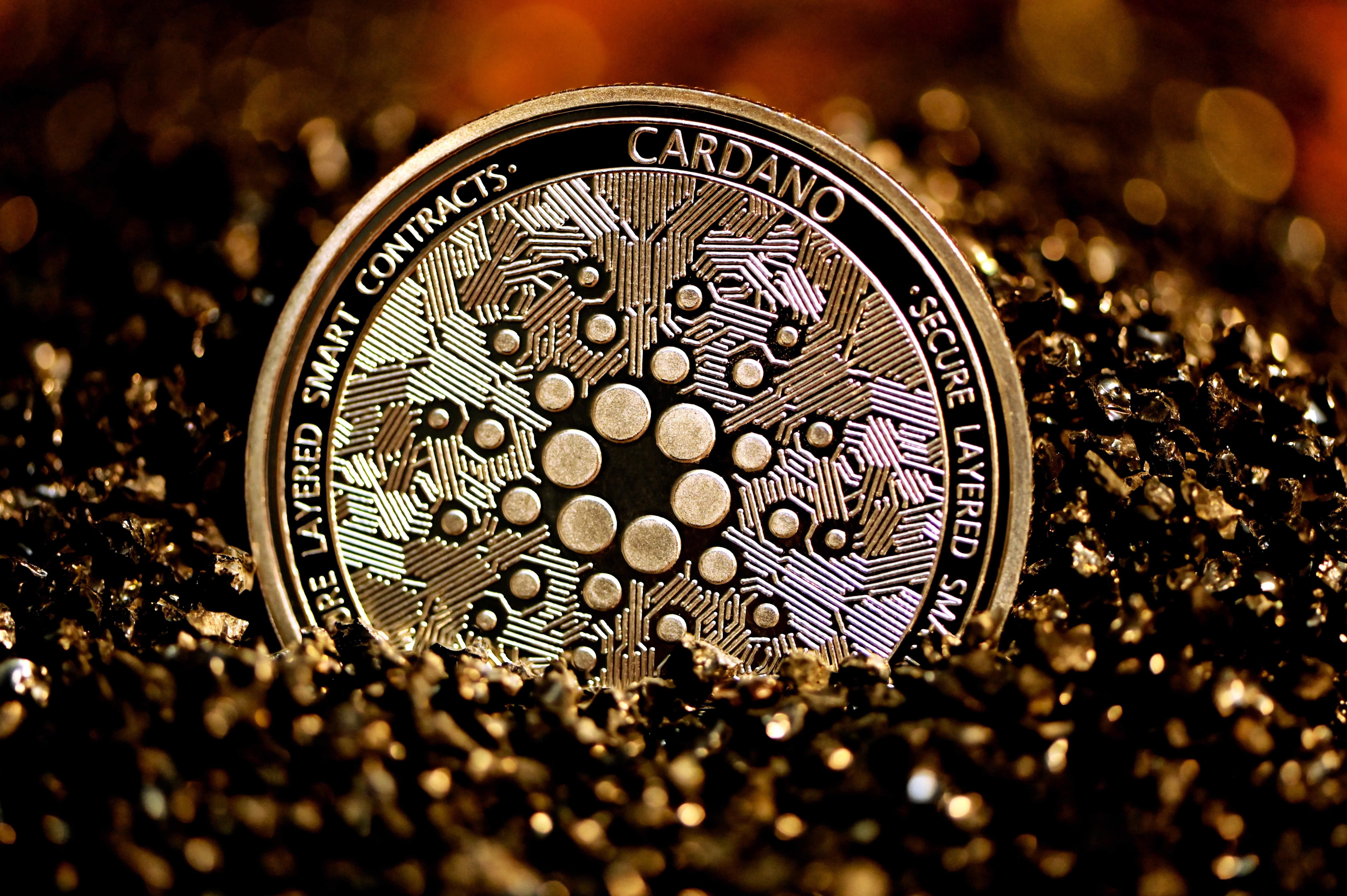 "Cardano is looking to pull a ""Bitcoin"" in El Salvador"