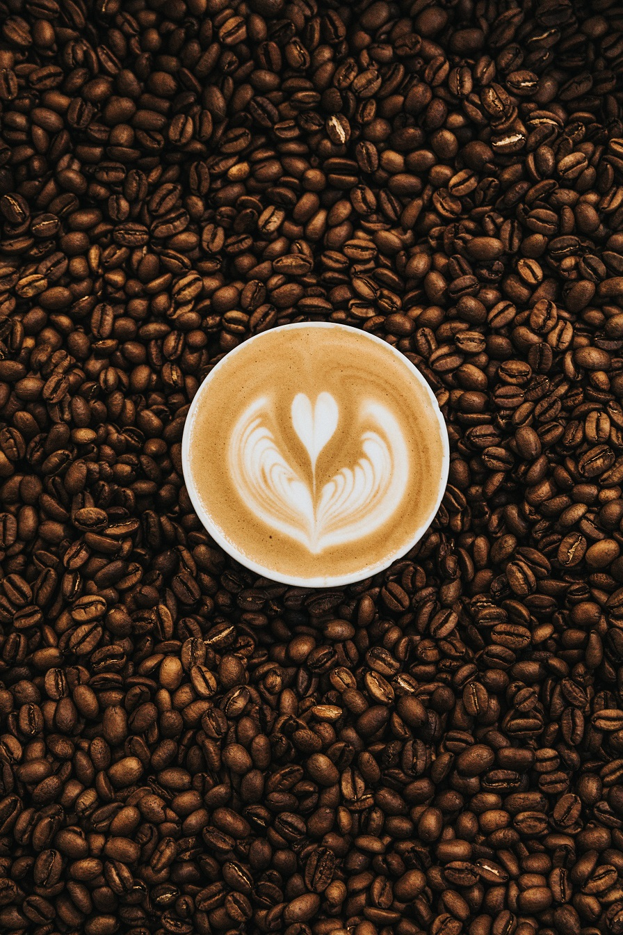 Newcomers, drink this coffee