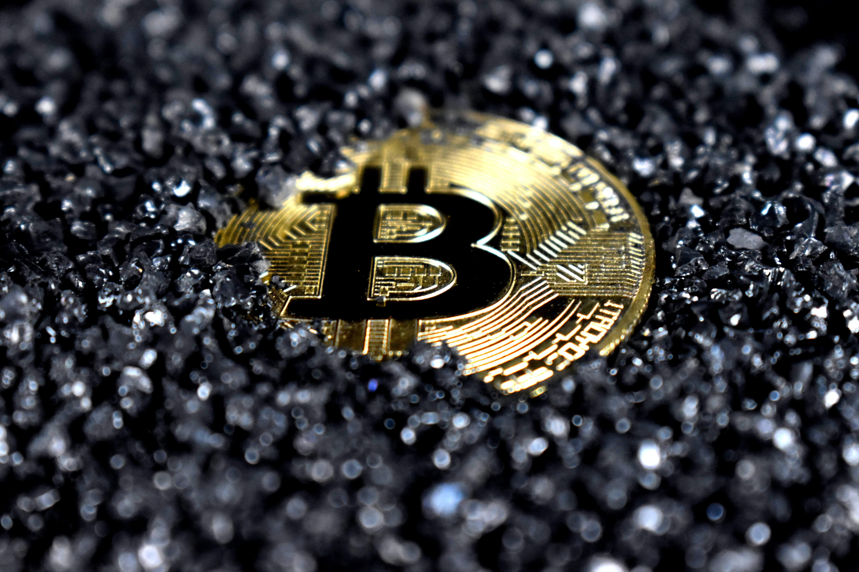 No, El Salvador Is Not Rising En Masse Against The Bitcoin Law