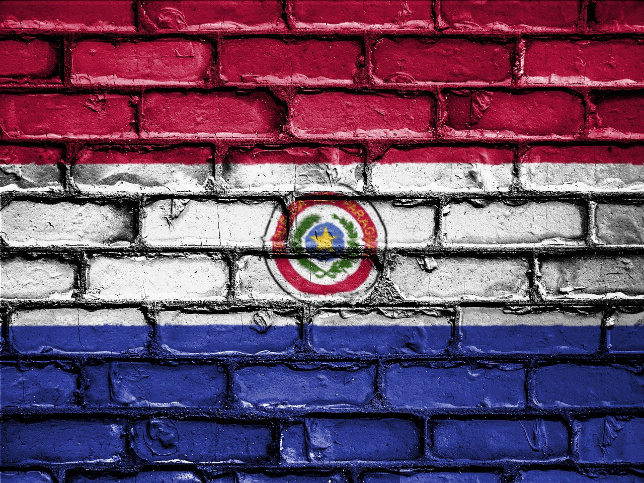 Paraguay, the country's flag on a wall