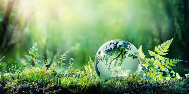 Blockchain and the Environment: Can They Live in Harmony?