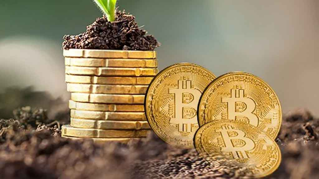 Institutional Investors Not Slowing Down On Bitcoin, Here's How Much They Own