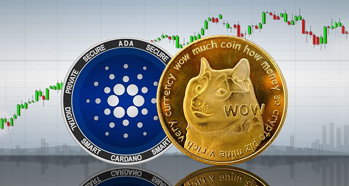 """Famed 'Dogecoin Millionaire' Sets Sights On Cardano, Going """"All In"""""""