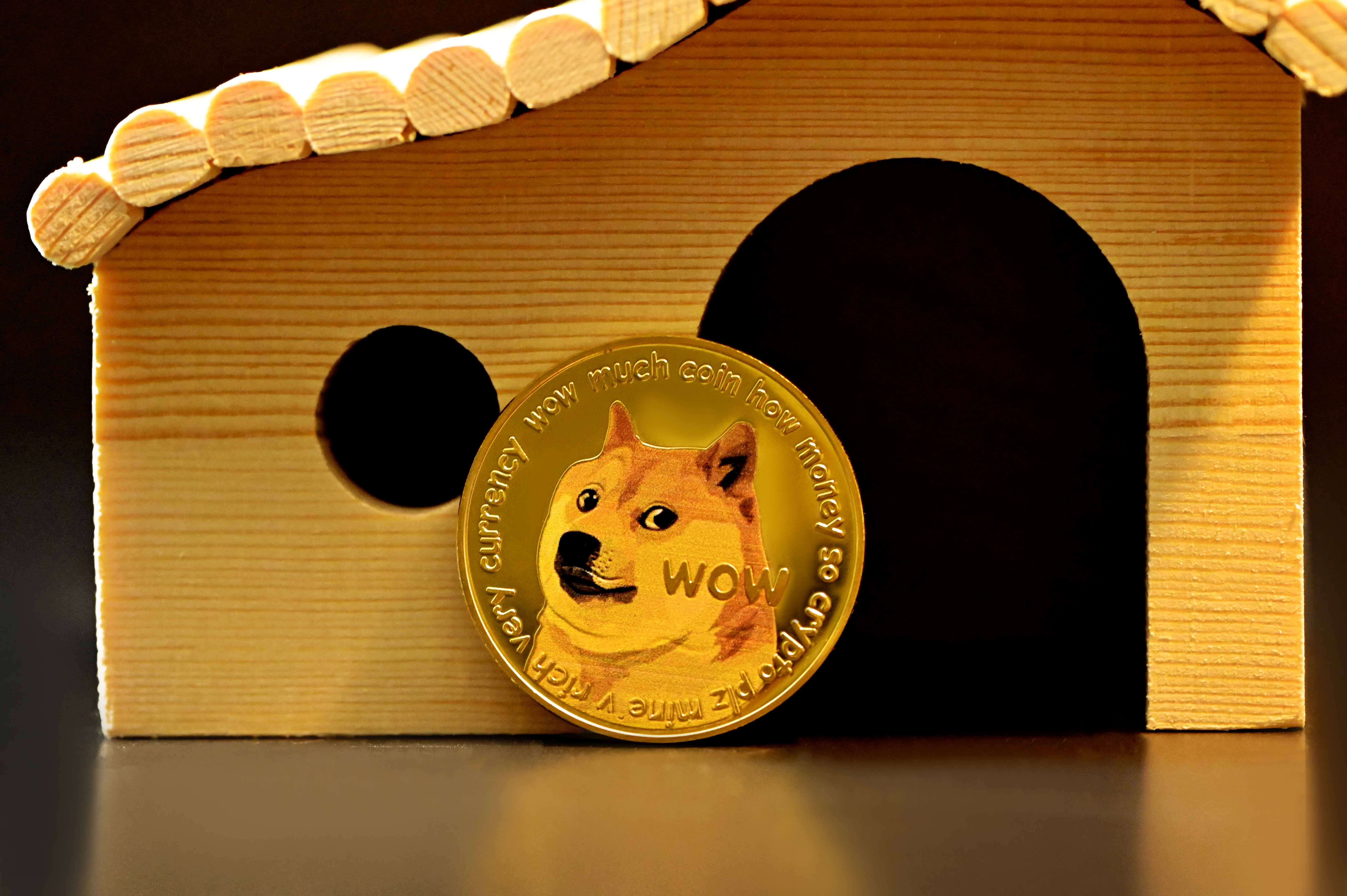 Is Dogecoin Losing Steam? DOGE Transactions Now Lowest Since 2017
